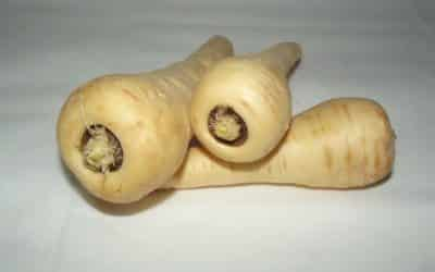 cooking parsnips