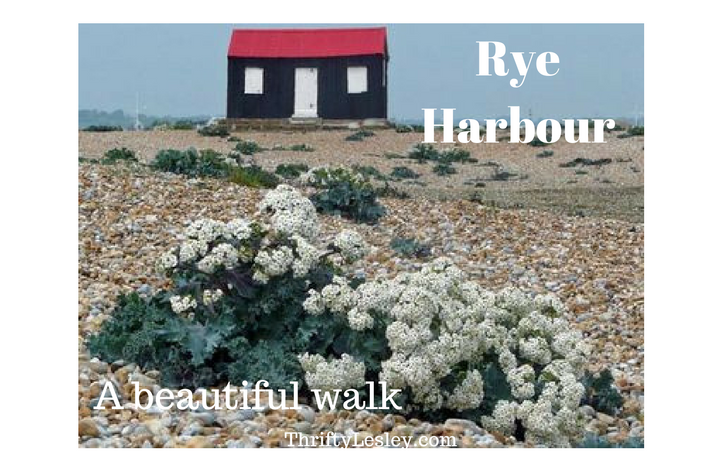 A walk in the sun, the wind and the cold at Rye – and a nice warm pub