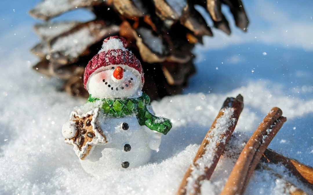 snowman enjoying a vegetarian christmas